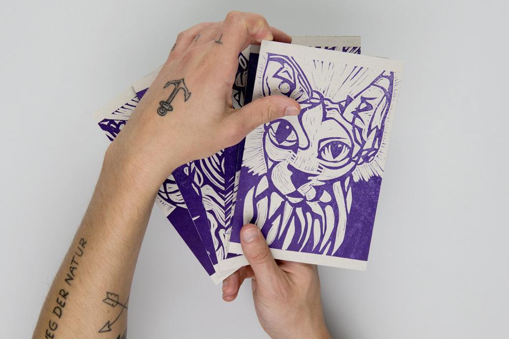 Kedi-1