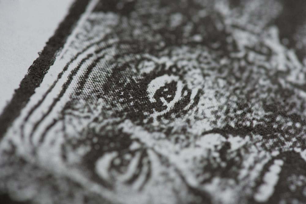 TLN_Detail-1